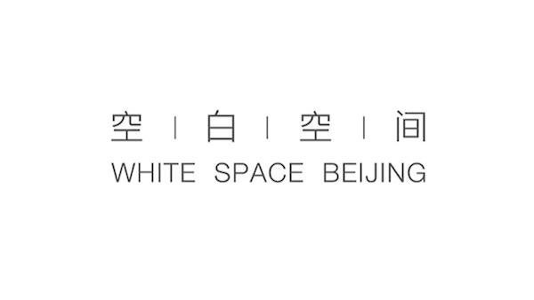 whitespace-logo